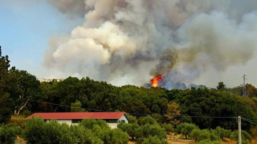 Zdjęcie przedstawia pożar w lesie, brudny dym zasłaniający chmury oraz dom znajdujący się blisko drzew.