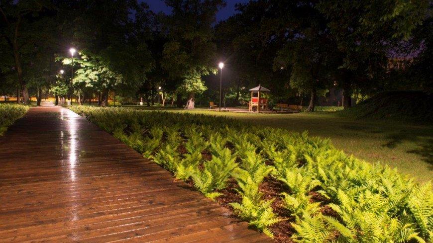 Na zdjęciu park miejski nocą